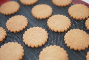cinnamoncookiesシナモンクッキー